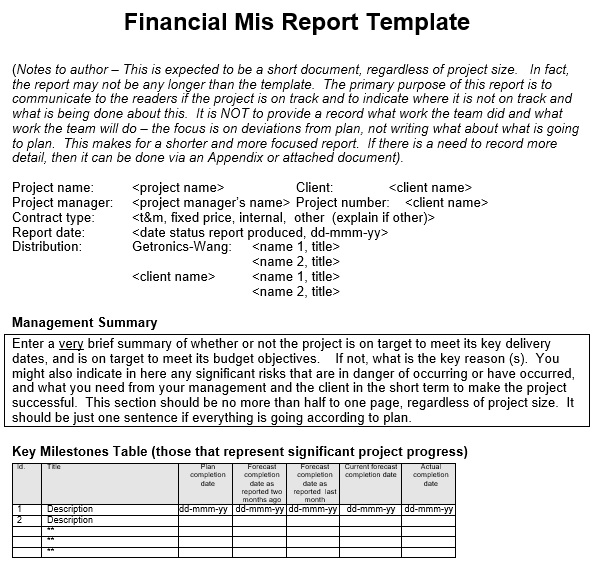 financial mis report template